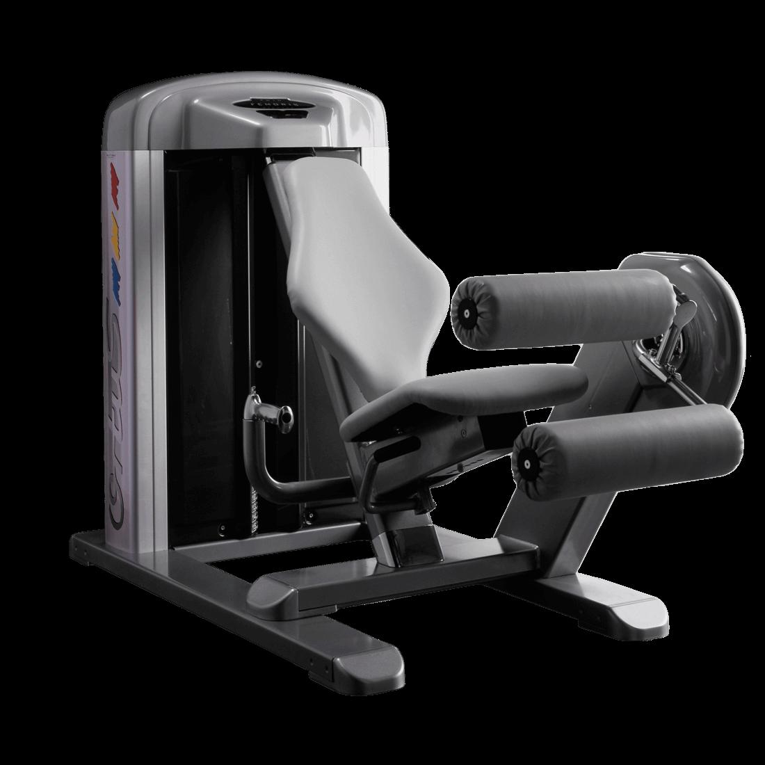 Máquina Femoral Sentado WP10